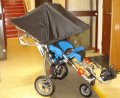 Private Buggy Sun Canopy
