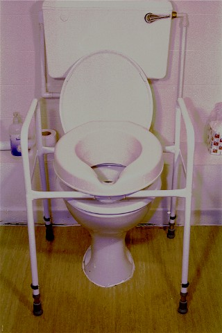 Toilet Surround with Seat Raiser